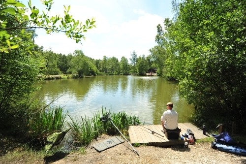 Coarse Fishing - Warmwell Holiday Park Weymouth, Dorset