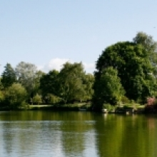 Coarse Fishing Lake Lakeside Rendezvous - Wiltshire