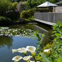 Fishing Breaks in South West England - Holiday Cottages