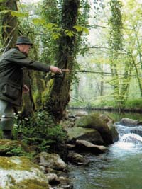 River Fishing in South West England