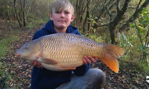 18.5lb Common Carp Bake Lakes, Saltash - Cornwall