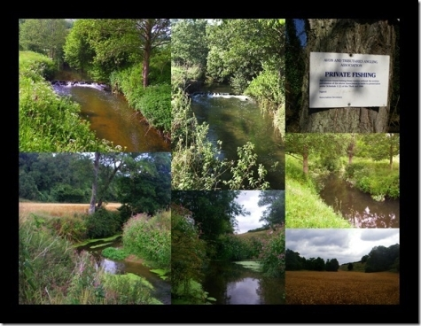River Fishing near Bath with Avon and Tributaries Angling Association