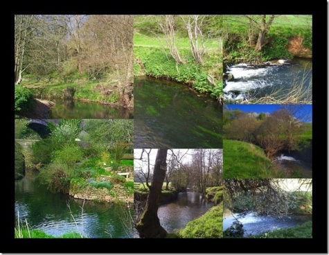 River Fishing with Avon and Tributaries Angling Association near Bath