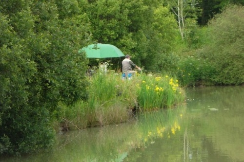 Blagdon Farm Coarse Fishing - Beaworthy, Devon