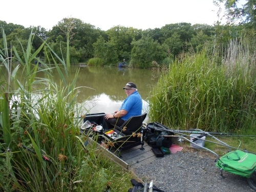 Coarse Angling Tarka Swims - Bideford & District Angling Club