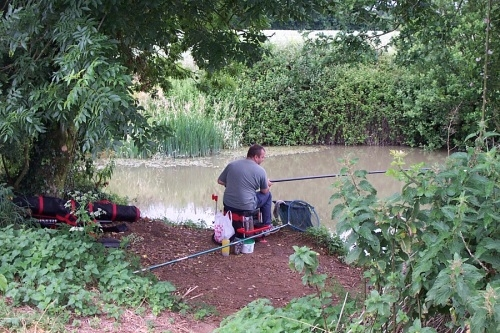 Coarse Fishing Edneys Frome - Somerset