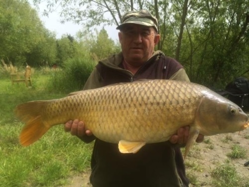 Coarse Fishing at Emerald Pool Highbridge - Somerset