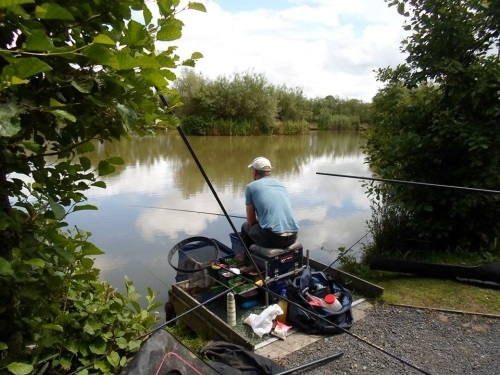 Coarse Fishing Tarka Swims - Bideford & District Angling Club