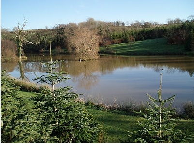 Coarse Fishing at Trewandra Farm - Cornwall