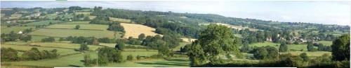 Courtmoor Farm - Honiton, Devon