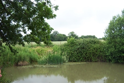 Edneys Coarse Fisheries Frome - Somerset