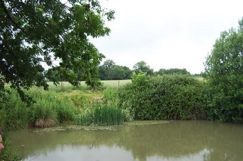 Edneys Coarse Fisheries Frome - Somerset