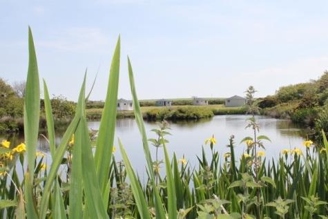 Glamping and Coarse Fishing Holidays Hartland Devon