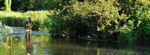 Hatch Pool River Fishing - Wrackleford Estate Dorset