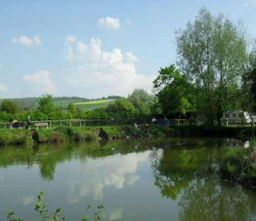 Heron Coarse Fishing Lake Blacklands - Calne, Wiltshire