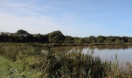 Highampton Coarse Fishing Lakes Highampton - Devon