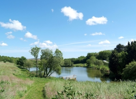 Coarse Fishing in Cornwall at Nanteague Farm