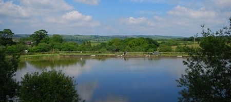 Oaktree Coarse Fishing Breaks - South Molton - Devon