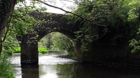 Fishing the River Torridge at Half Moon Inn