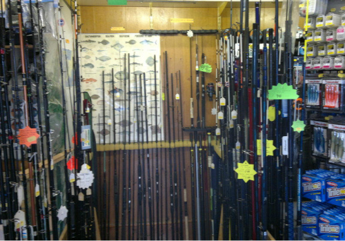 Rods, Reels - Mevagissey Shark Centre Cornwall