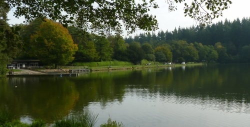 Shearwater Coarse Fishing Lake - Wiltshire