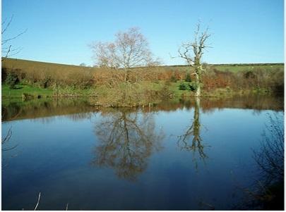 Trewandra Coarse Fishing Lake - Cornwall