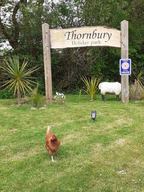 Welcome to Thornbury Holiday Park Devon