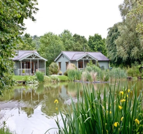 Carp Fishing Holidays South View Lodges - Devon