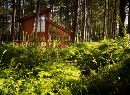 Sherwood Cabin - Forest Holidays