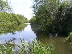 Tan House Farm Lake Yate, Somerset