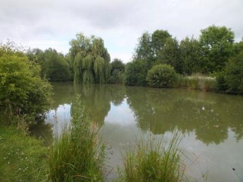 Thorney Lakes Caravan Park Somerset