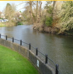 Fisheries Forum Fordingbridge
