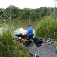 Coarse Angling Tarka Swims - Bideford & District Angling Club