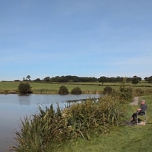 Coarse Fishing Highampton Lakes - Devon