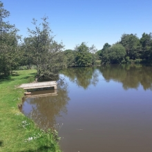 Coarse Fishing Lakes at Thornbury Park Holidays