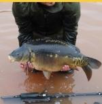 Colebrook Specimen Carp Fishery