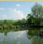 Heron Coarse Fishing Lake Blacklands - Calne, Wiltshire