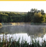 Coarse Fishing at Rosewall Camping Weymouth in Dorset