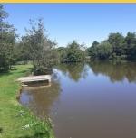 Coarse Fishing Lakes at Thornbury Park Holidays