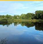 Coarse Fishing Lake at Wooda Lakes  Pancrasweek, Holsworthy, Devon