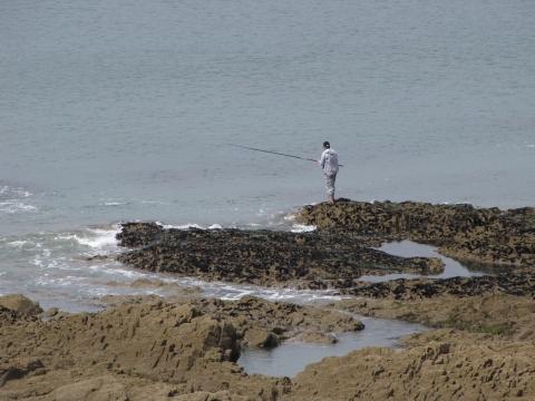 Fishing North Devon & Somerset Coast