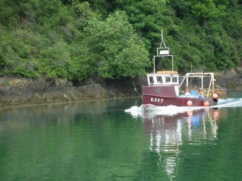Fishing Boat on River Torridge North Devon